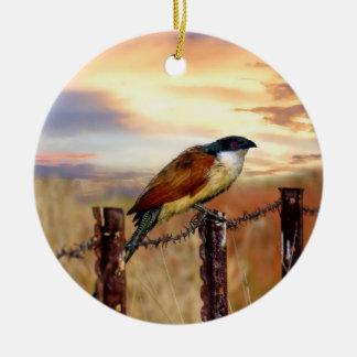 Burchells Coucal Kuckuckvogel Keramik Ornament