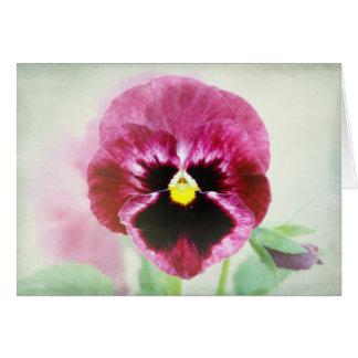 Burgunder rote Pansy-Blume Karte