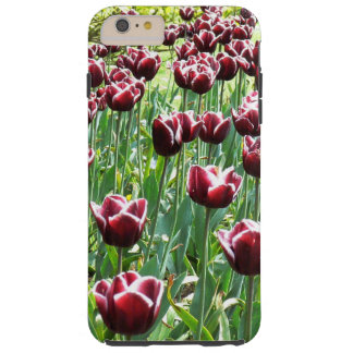 Burgundy and White Tulips Tough iPhone 6 Plus Case