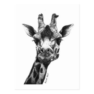 Burney die Giraffe Postkarte