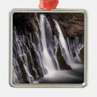 Burney fällt in Farbe Silbernes Ornament