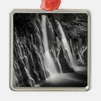 Burney fällt in Schwarzweiss Quadratisches Silberfarbenes Ornament