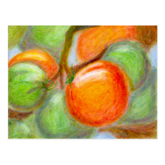 Burpee Tomaten, Postkarte