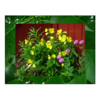 Butterblumeen und Blätter Postkarte