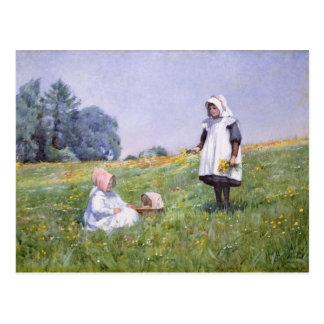 Butterblumeen und Gänseblümchen Postkarte