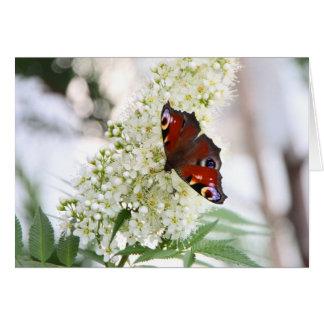 Butterfly Greetings Grußkarte