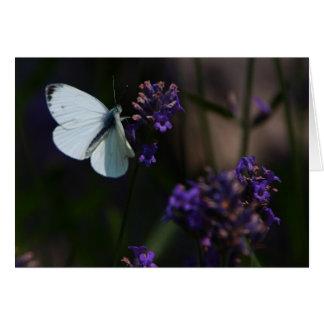 Butterfly Grußkarte