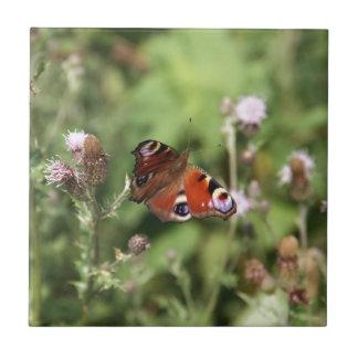 Butterflying Kleine Quadratische Fliese