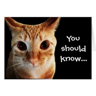 ButterLieben Sie lustige Katzen-Anmerkungs-Karte Karte