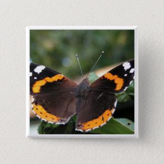 Button roten Admiral-Schmetterling