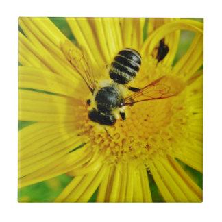 buzzzzz kleine quadratische fliese
