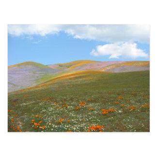 C-Frühling Lndscp Postkarte