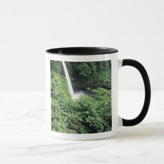 CA, Costa Rica. La Paz Wasserfall und impatients Tasse