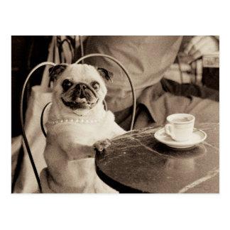 Café-Mops Postkarte