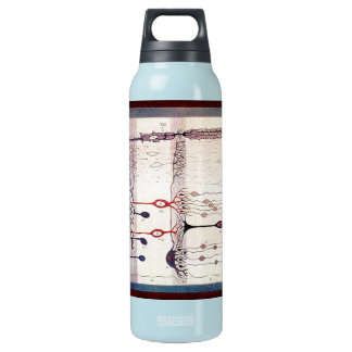 Cajal Isolierte Flasche