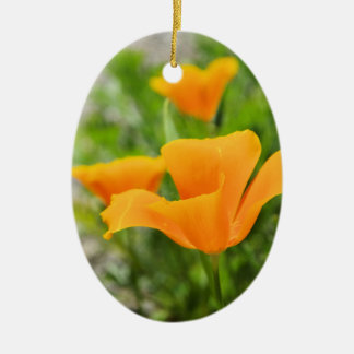 Californian Poppy Ovales Keramik Ornament