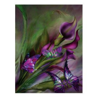 Calla-Lilien-Kunst-Postkarte Postkarte