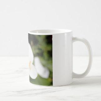 Calla Lilly Romance Kaffeetasse