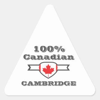 Cambridge 100% dreieckiger aufkleber