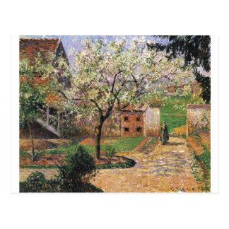 Camille Pissarro - blühender Pflaumen-Baum Eragny Postkarte