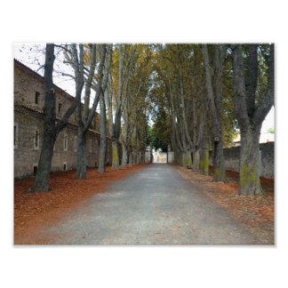 Camino De Santiago Fotodrucke