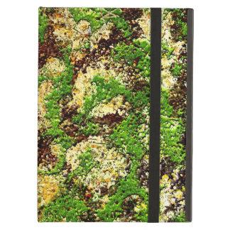Camouflage-Moosrost gealterte Grunge-alte