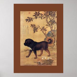 Cangni 苍猊 ~ tibetanischer Mastiff ~ Giuseppe Poster