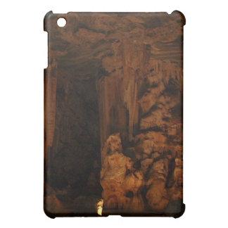 Cango höhlt S. Afrika iPad Kasten aus iPad Mini Hülle