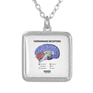 Cannabinoid Empfänger-Innere (Gehirn-Anatomie) Versilberte Kette