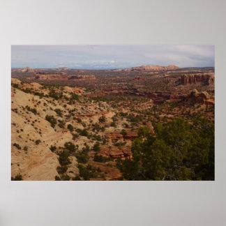 Canyonlands Ansicht von der Hals-Frühlings-Spur Poster