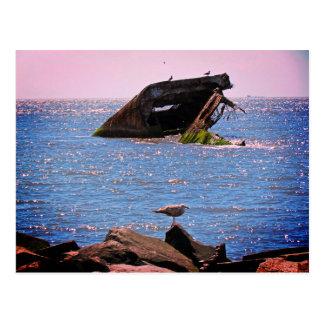 Cape May Schiffbruch Postkarte