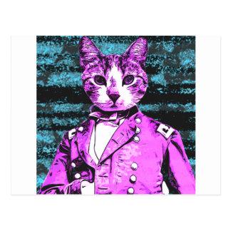 captian Meow Postkarte