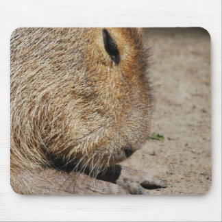 Capybara-Mausunterlage Mousepads