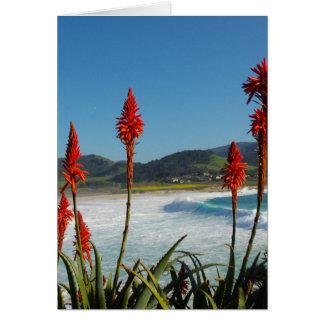 Carmel Punktstrand mit Fackel-Aloe-Blumen Karte