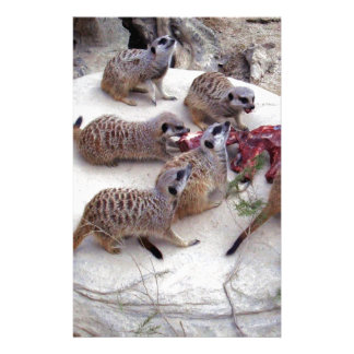 Carnivorous_Meerkats, _ Briefpapier