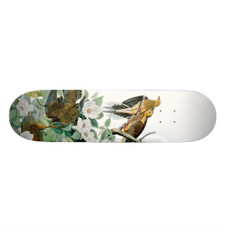 Carolina-Schildkröte-Taube, Vögel von Amerika 18,7 Cm Mini Skateboard Deck