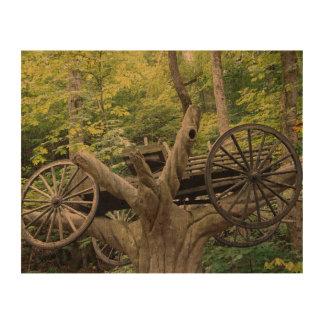 Carraige im Baum Korkpapier