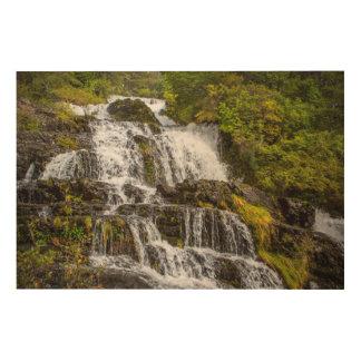 Cascada del Toro Holzleinwand