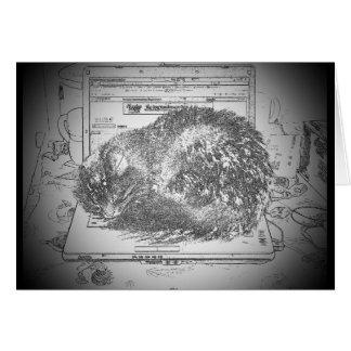 CAT auf meine Schoss-Oberseite Karte