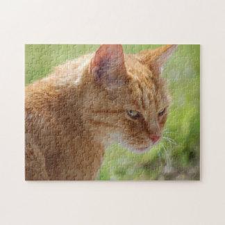 Cat Katze Chat - Photography Jean-Louis Glineur Puzzle