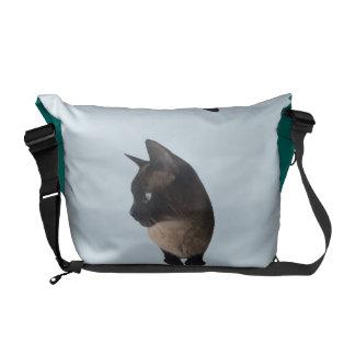 Cat-TASCHE (Rucksack der siamesischen Katze) Kuriertasche