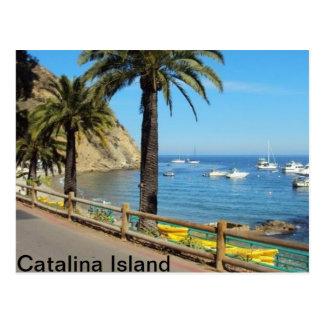 Catalina-Insel-Postkarte Postkarte