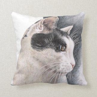 Cats Eye - Katzenblick Kissen