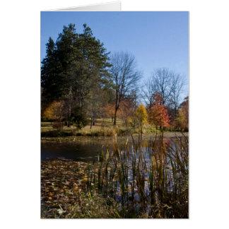 """""""Cattail-Teich im Herbst """" Karte"""