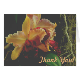 Cattleya orange Orchideen-Blumen Karte