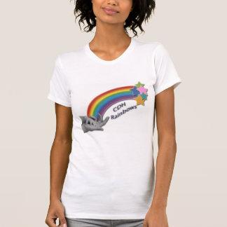 CDH Regenbogen-Damen-Leistung Mikro-Faser T-Shirt