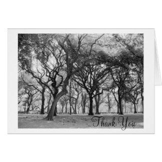 Central Park danken Ihnen Karte