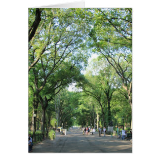 Central Park: Der Weg des Dichters im Sommer Karte
