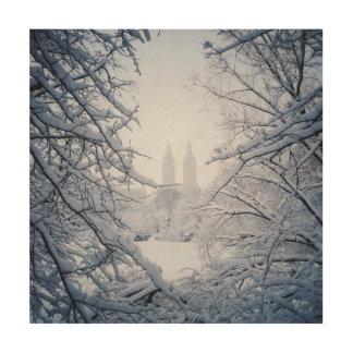 Central Park gerahmt im Schnee und im Eis Holzleinwand