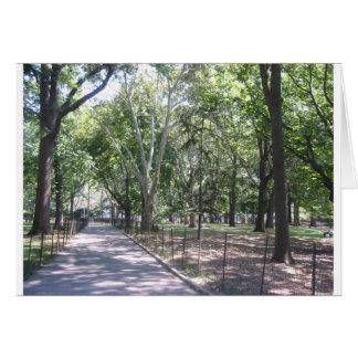 Central Park Karte